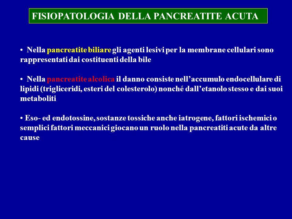 FISIOPATOLOGIA DELLA PANCREATITE ACUTA