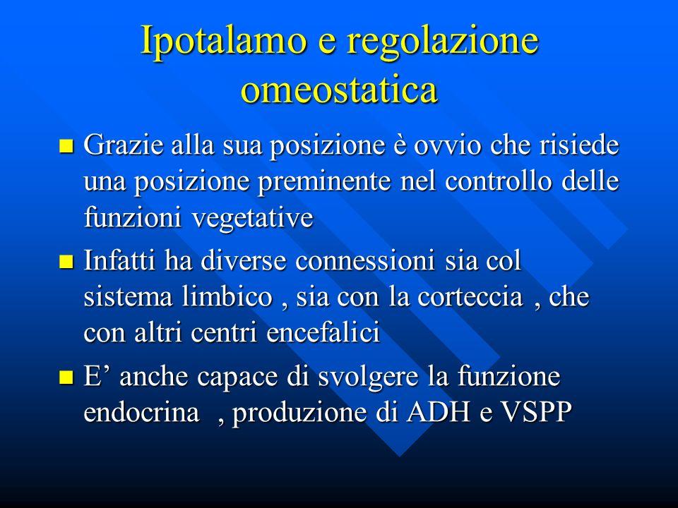 Ipotalamo e regolazione omeostatica