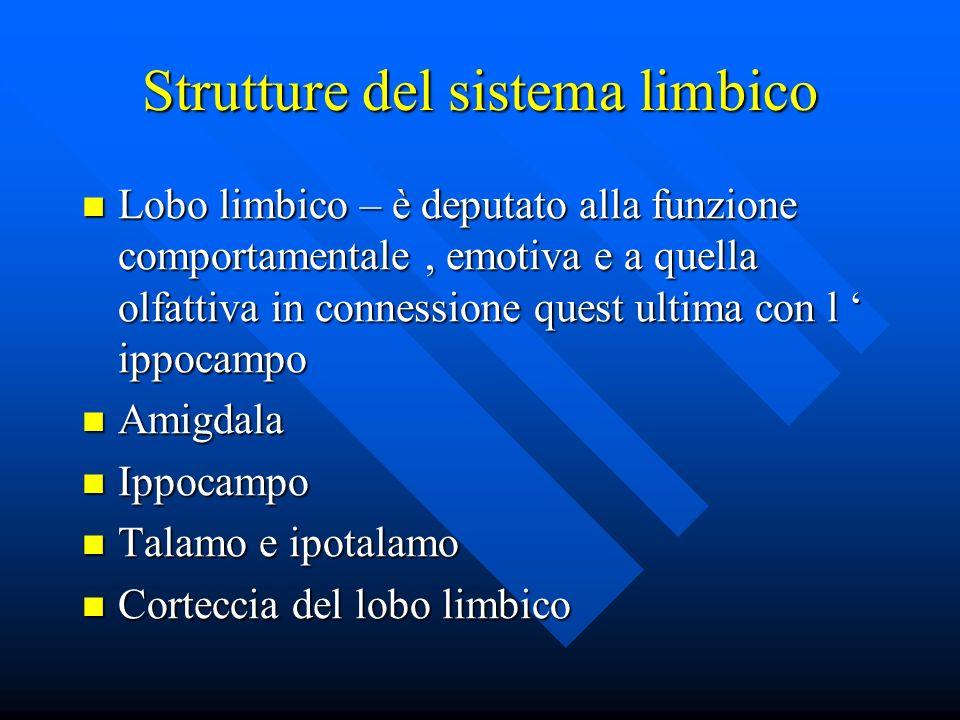 Strutture del sistema limbico