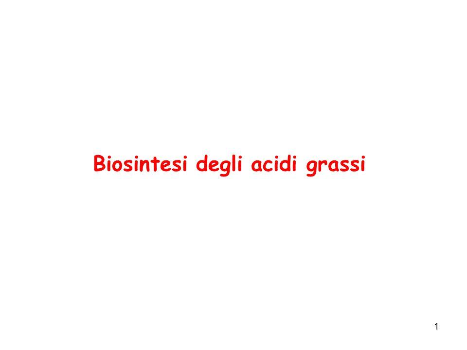 Biosintesi degli acidi grassi