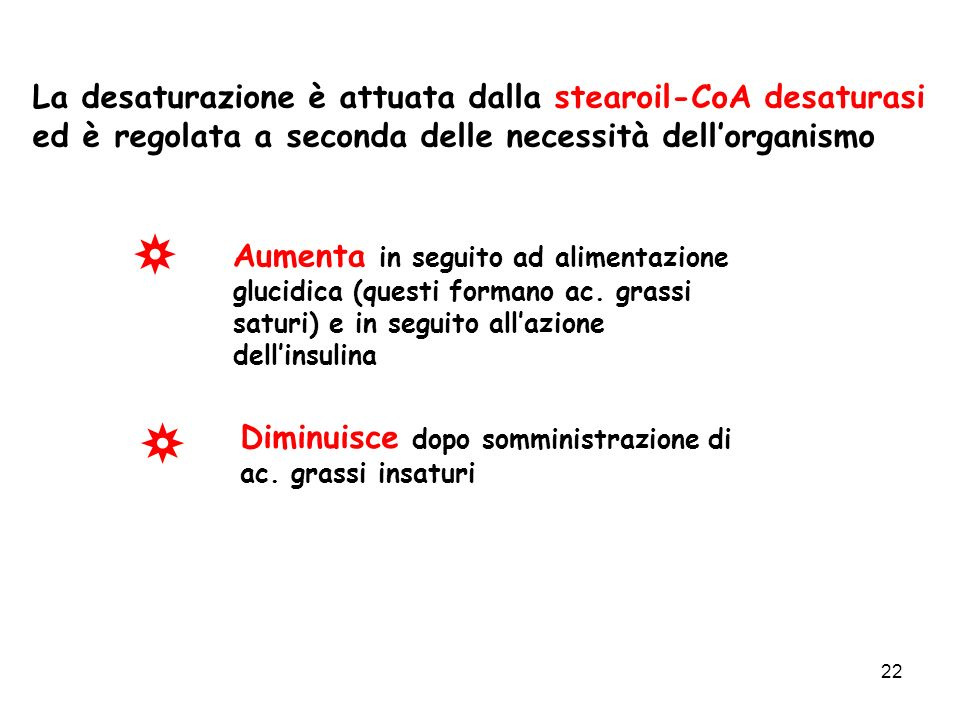 La desaturazione è attuata dalla stearoil-CoA desaturasi ed è regolata a seconda delle necessità dell'organismo