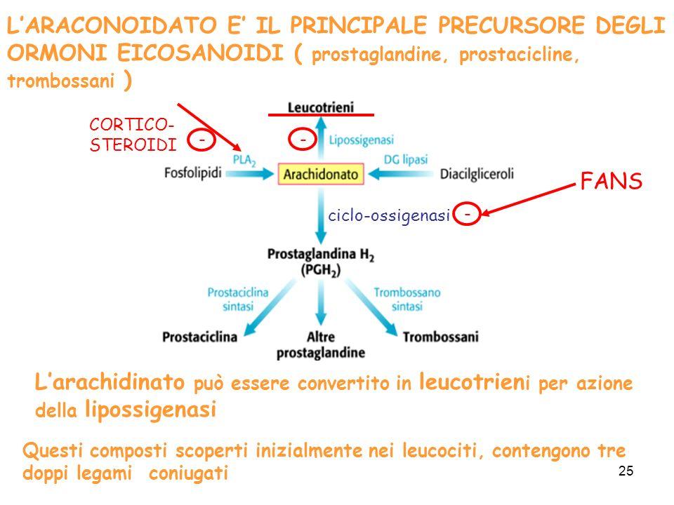 L'ARACONOIDATO E' IL PRINCIPALE PRECURSORE DEGLI ORMONI EICOSANOIDI ( prostaglandine, prostacicline, trombossani )