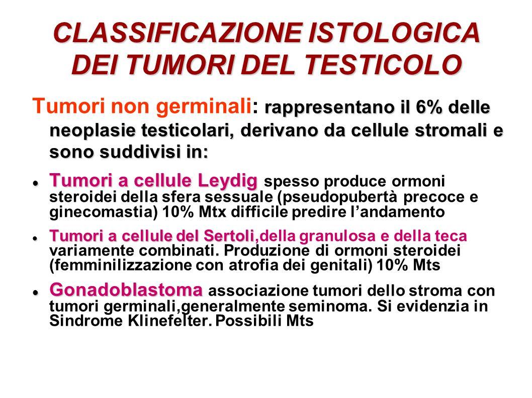 CLASSIFICAZIONE ISTOLOGICA DEI TUMORI DEL TESTICOLO