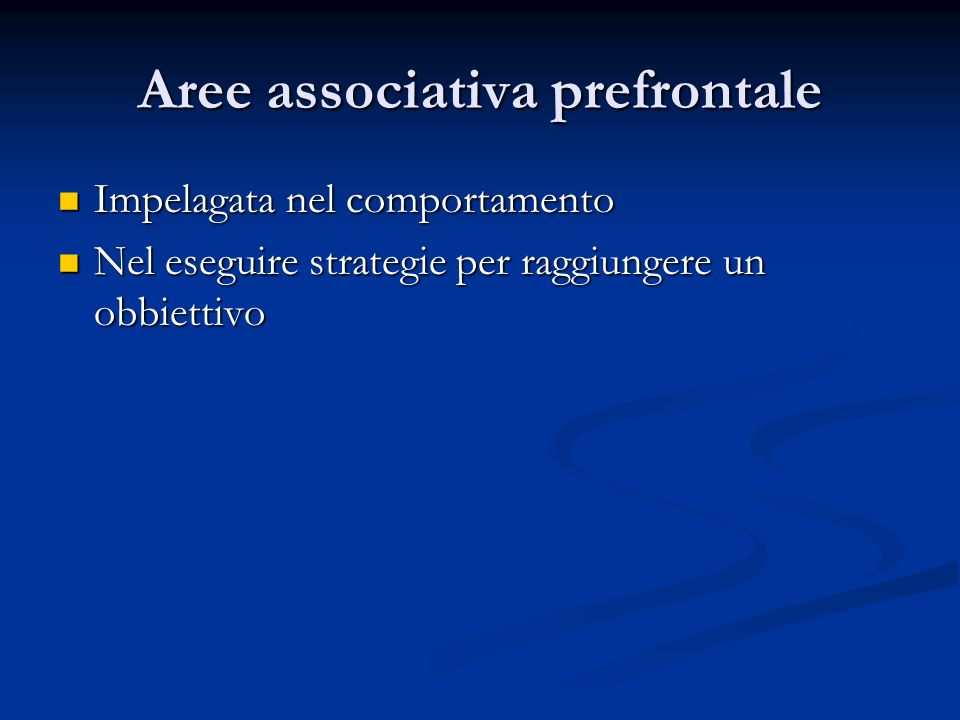 Aree associativa prefrontale