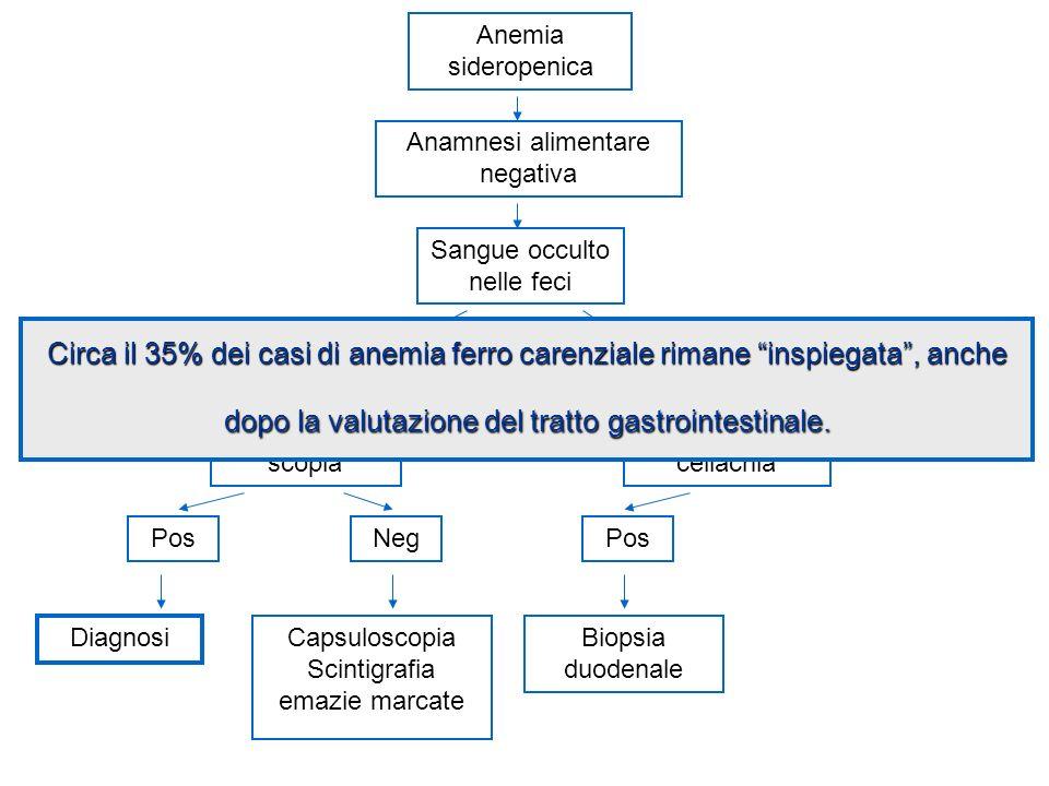 Anemia sideropenica Anamnesi alimentare negativa. Sangue occulto nelle feci.