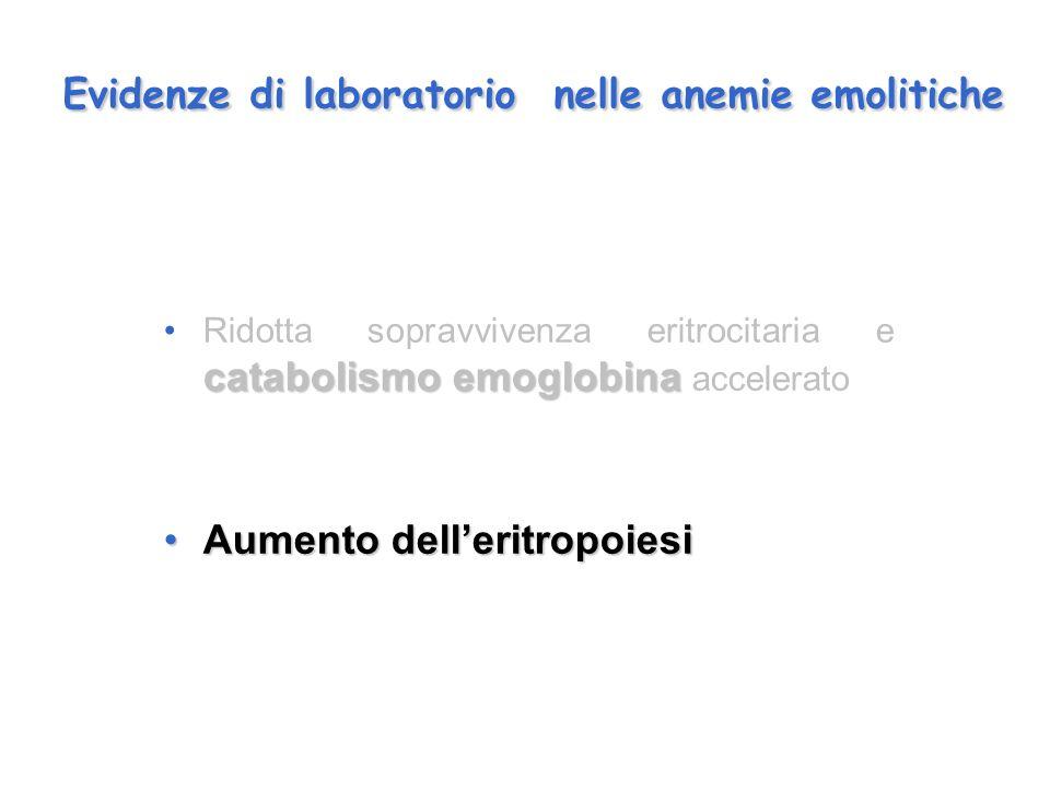 Evidenze di laboratorio nelle anemie emolitiche