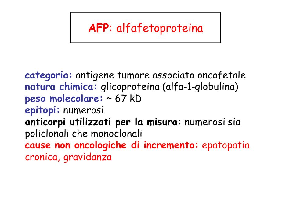 AFP: alfafetoproteina