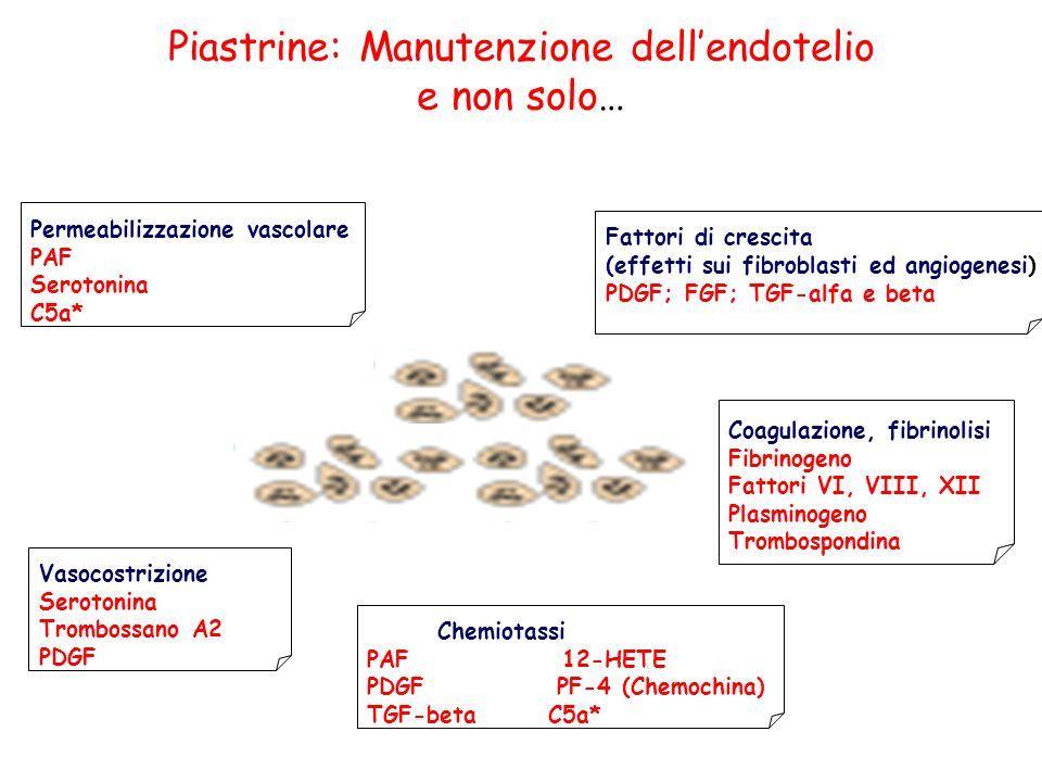 Piastrine: Manutenzione dell'endotelio e non solo…