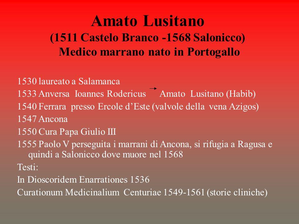Amato Lusitano (1511 Castelo Branco -1568 Salonicco) Medico marrano nato in Portogallo