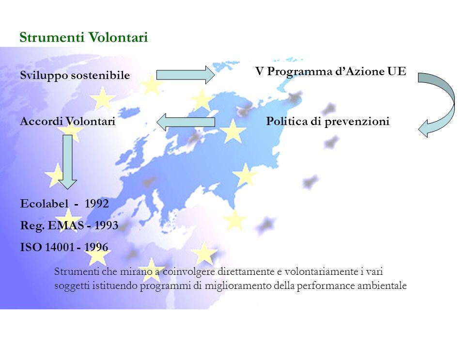 Strumenti Volontari V Programma d'Azione UE Sviluppo sostenibile