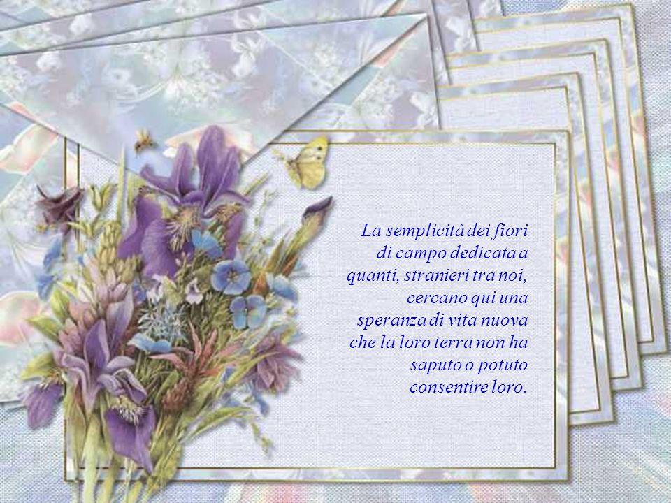 La semplicità dei fiori