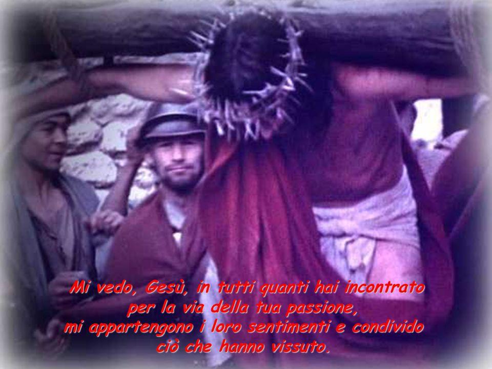 Mi vedo, Gesù, in tutti quanti hai incontrato