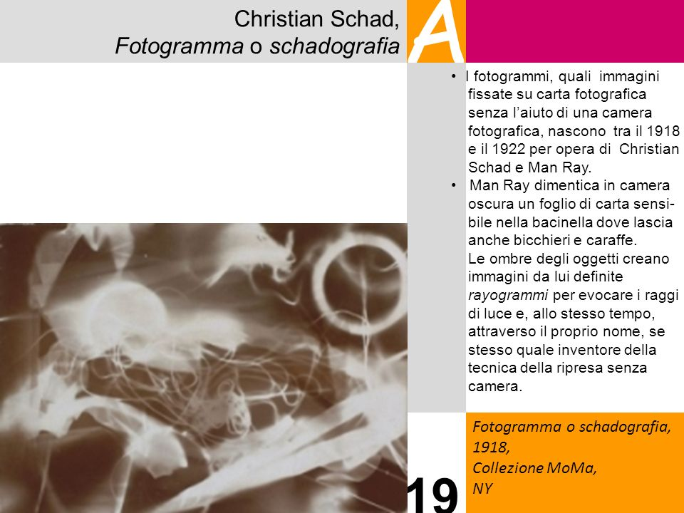 A 19 Christian Schad, Fotogramma o schadografia