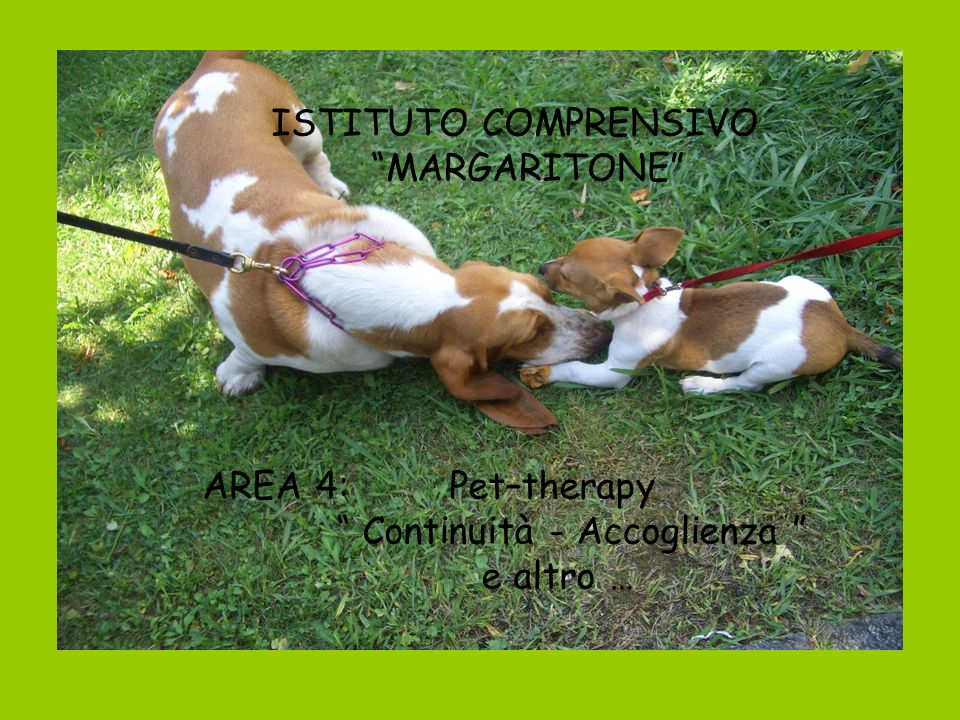 ISTITUTO COMPRENSIVO MARGARITONE AREA 4: Pet–therapy.