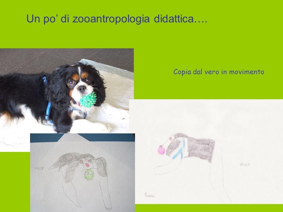 Un po' di zooantropologia didattica….