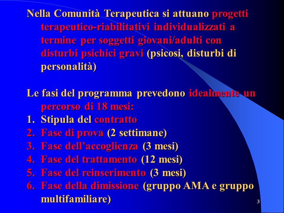 Nella Comunità Terapeutica si attuano progetti terapeutico-riabilitativi individualizzati a termine per soggetti giovani/adulti con disturbi psichici gravi (psicosi, disturbi di personalità)