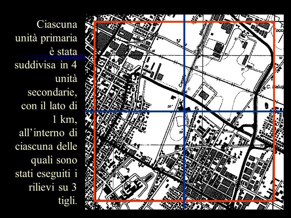 Ciascuna unità primaria è stata suddivisa in 4 unità secondarie, con il lato di 1 km, all'interno di ciascuna delle quali sono stati eseguiti i rilievi su 3 tigli.