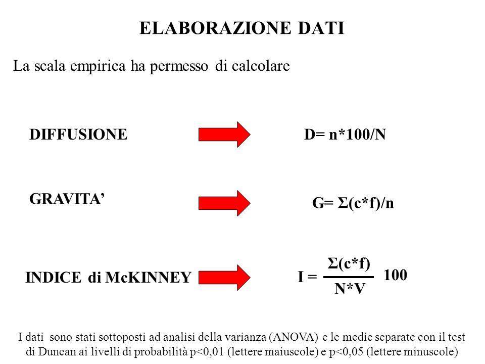 ELABORAZIONE DATI La scala empirica ha permesso di calcolare