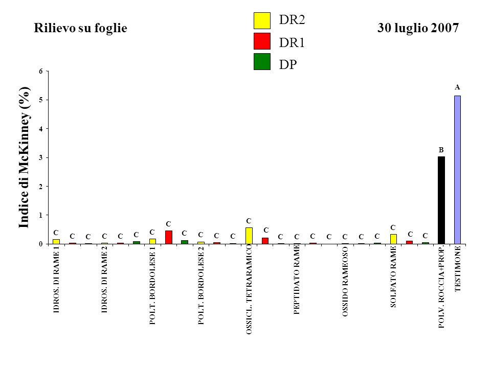 DR2 Rilievo su foglie 30 luglio 2007 DR1 DP Indice di McKinney (%) A B