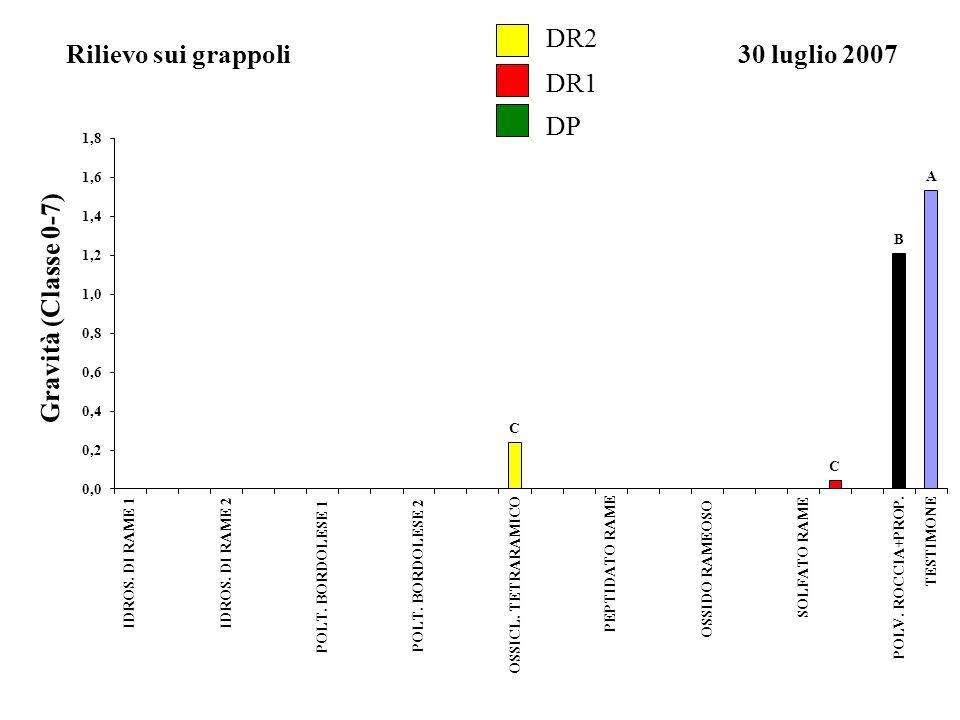 DR2 Rilievo sui grappoli 30 luglio 2007 DR1 DP Gravità (Classe 0-7) A