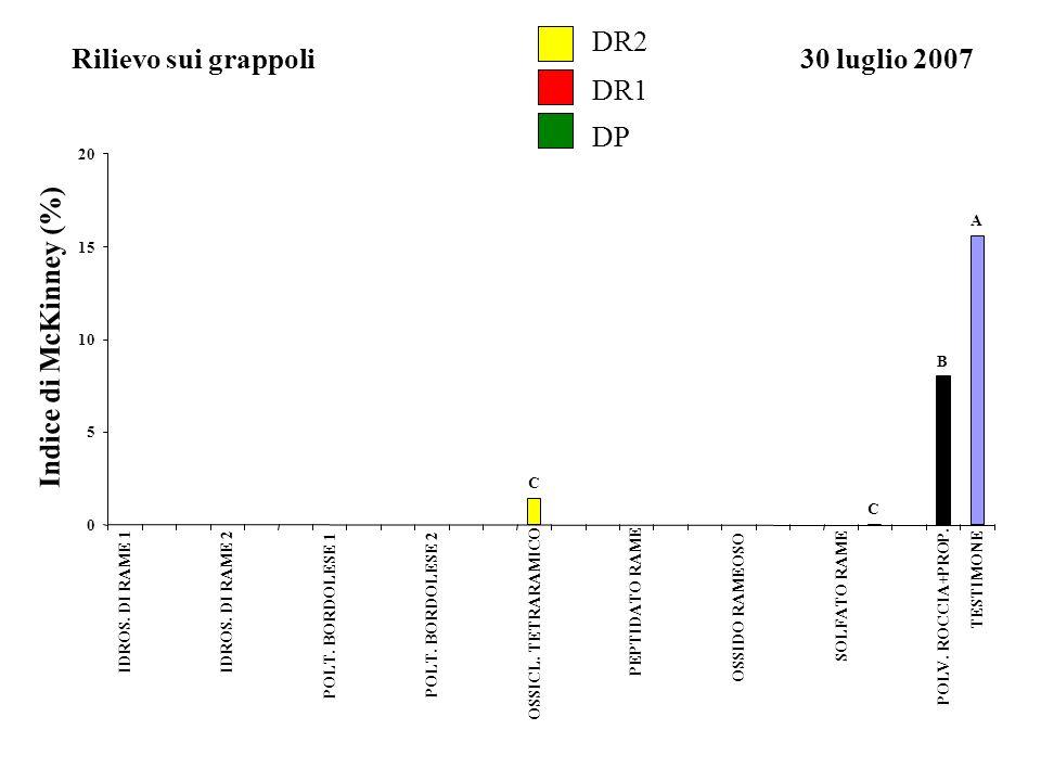 DR2 Rilievo sui grappoli 30 luglio 2007 DR1 DP Indice di McKinney (%)