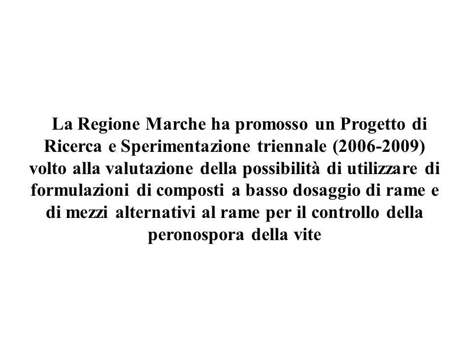 La Regione Marche ha promosso un Progetto di Ricerca e Sperimentazione triennale (2006-2009) volto alla valutazione della possibilità di utilizzare di formulazioni di composti a basso dosaggio di rame e di mezzi alternativi al rame per il controllo della peronospora della vite