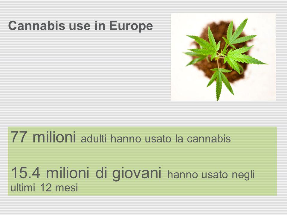 77 milioni adulti hanno usato la cannabis
