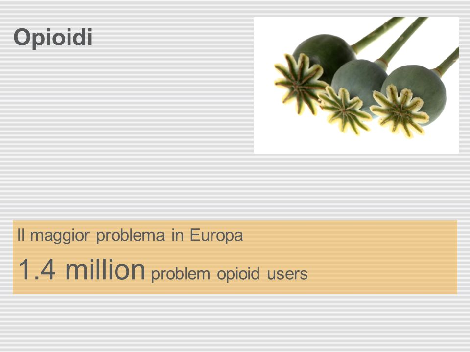 1.4 million problem opioid users