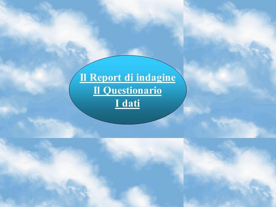 Il Report di indagine Il Questionario I dati
