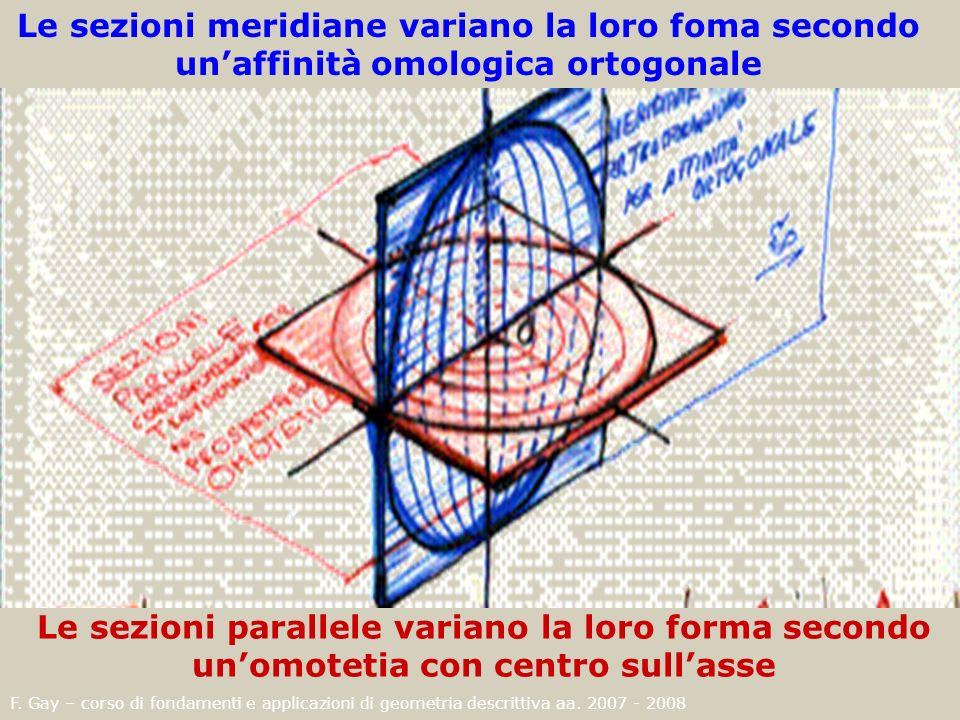 Le sezioni meridiane variano la loro foma secondo un'affinità omologica ortogonale
