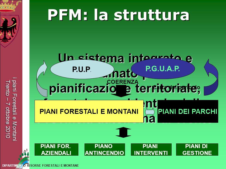 PIANI FORESTALI E MONTANI