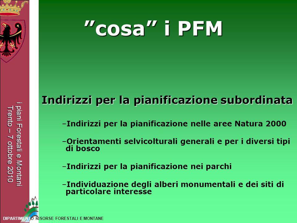 cosa i PFM Indirizzi per la pianificazione subordinata