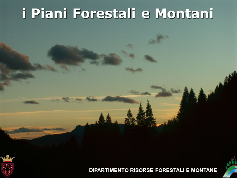 i Piani Forestali e Montani