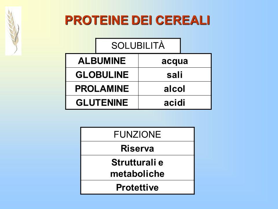 Strutturali e metaboliche