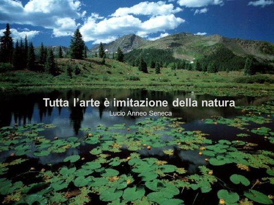 Tutta l'arte è imitazione della natura.
