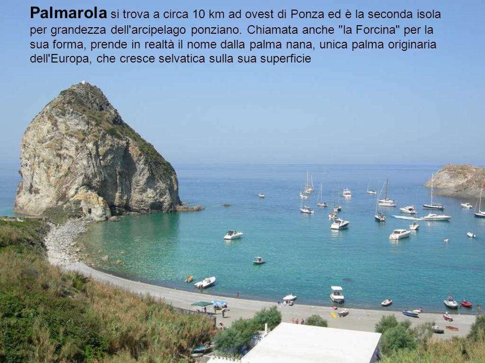 Palmarola si trova a circa 10 km ad ovest di Ponza ed è la seconda isola per grandezza dell arcipelago ponziano.