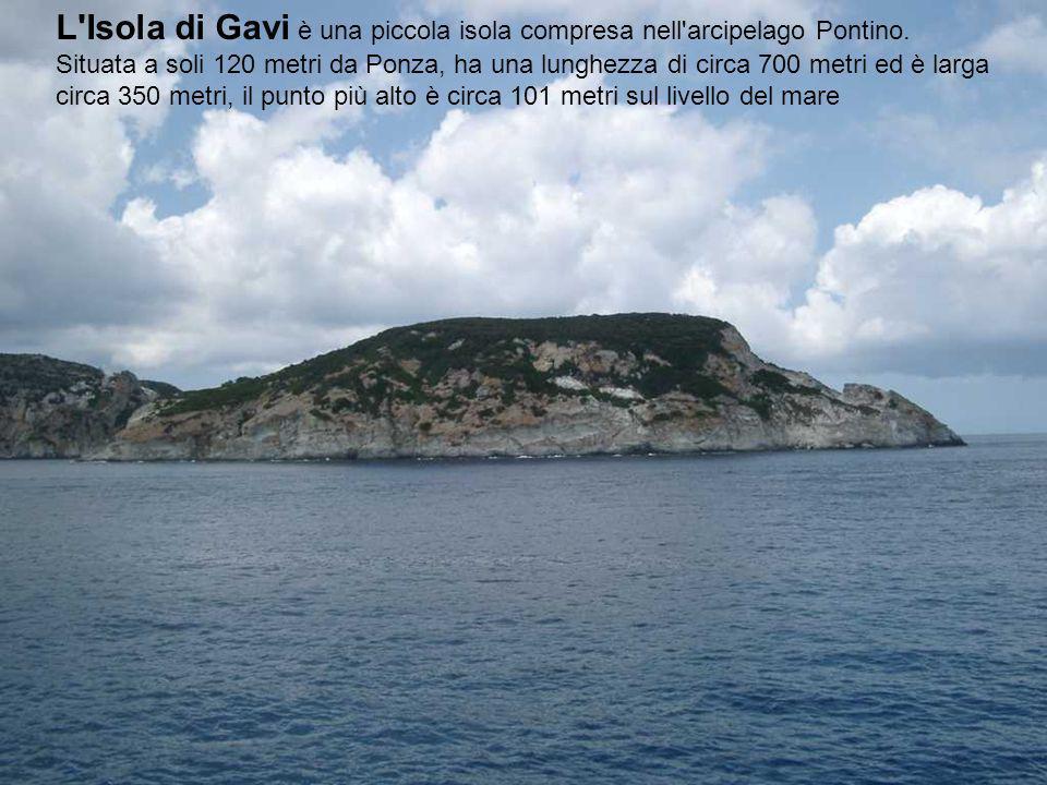 L Isola di Gavi è una piccola isola compresa nell arcipelago Pontino