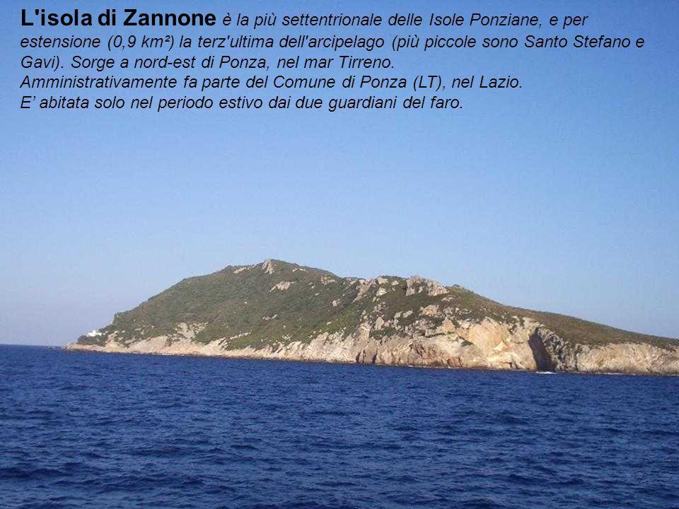 L isola di Zannone è la più settentrionale delle Isole Ponziane, e per estensione (0,9 km²) la terz ultima dell arcipelago (più piccole sono Santo Stefano e Gavi). Sorge a nord-est di Ponza, nel mar Tirreno.