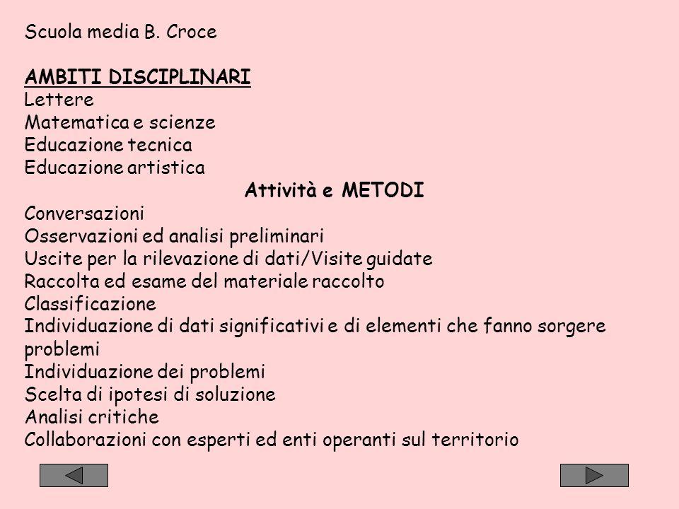 Scuola media B. Croce AMBITI DISCIPLINARI. Lettere. Matematica e scienze. Educazione tecnica. Educazione artistica.