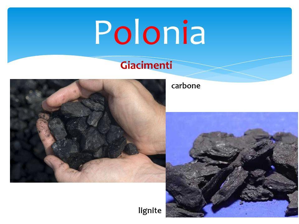 Polonia Giacimenti carbone lignite