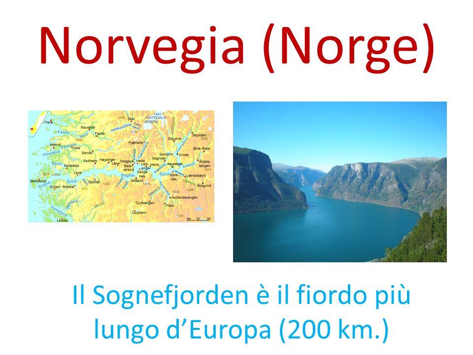 Il Sognefjorden è il fiordo più lungo d'Europa (200 km.)