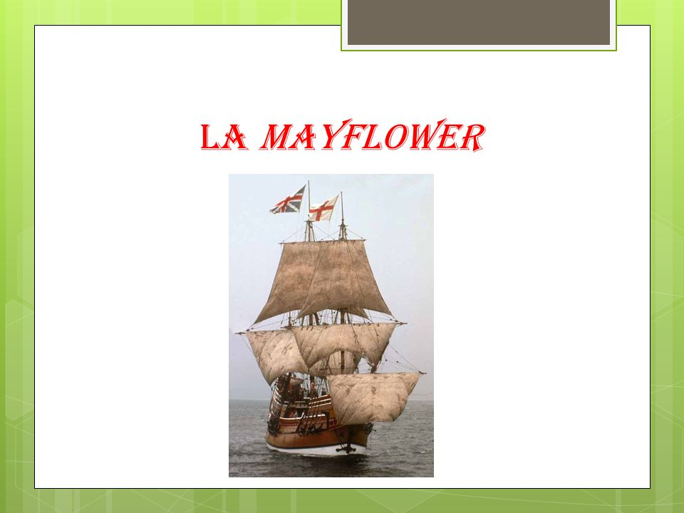 La Mayflower