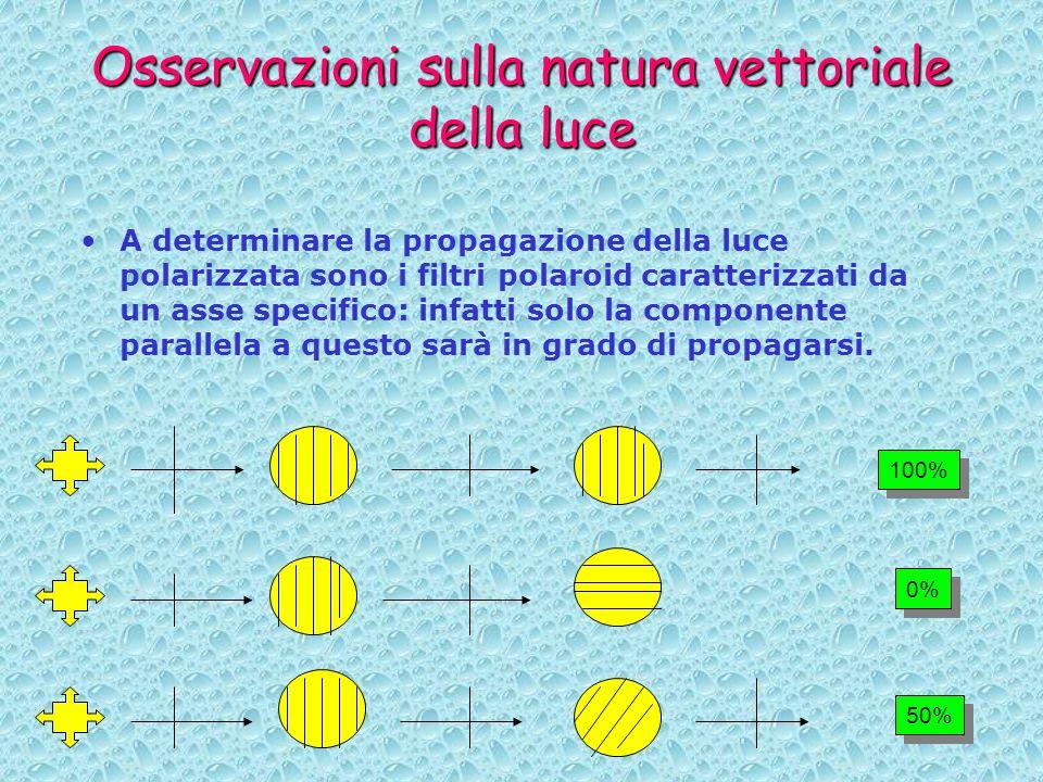 Osservazioni sulla natura vettoriale della luce