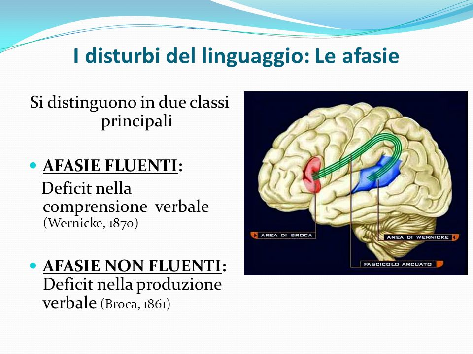 I disturbi del linguaggio: Le afasie