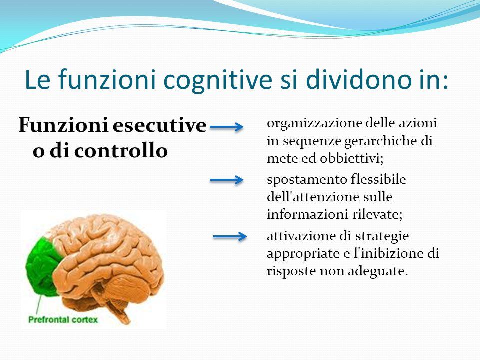 Le funzioni cognitive si dividono in: