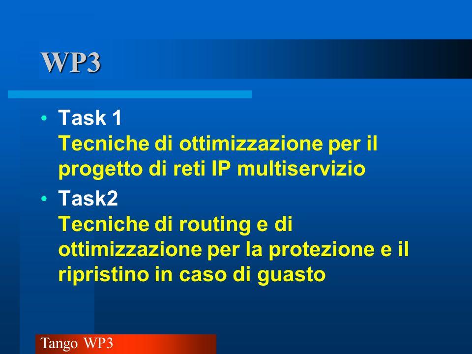 WP3 Task 1 Tecniche di ottimizzazione per il progetto di reti IP multiservizio.