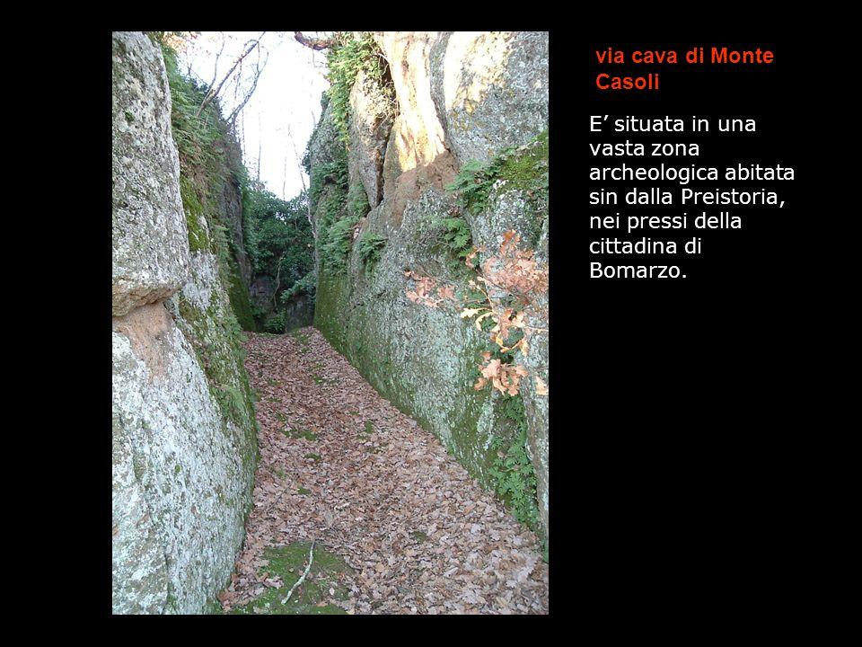 via cava di Monte Casoli