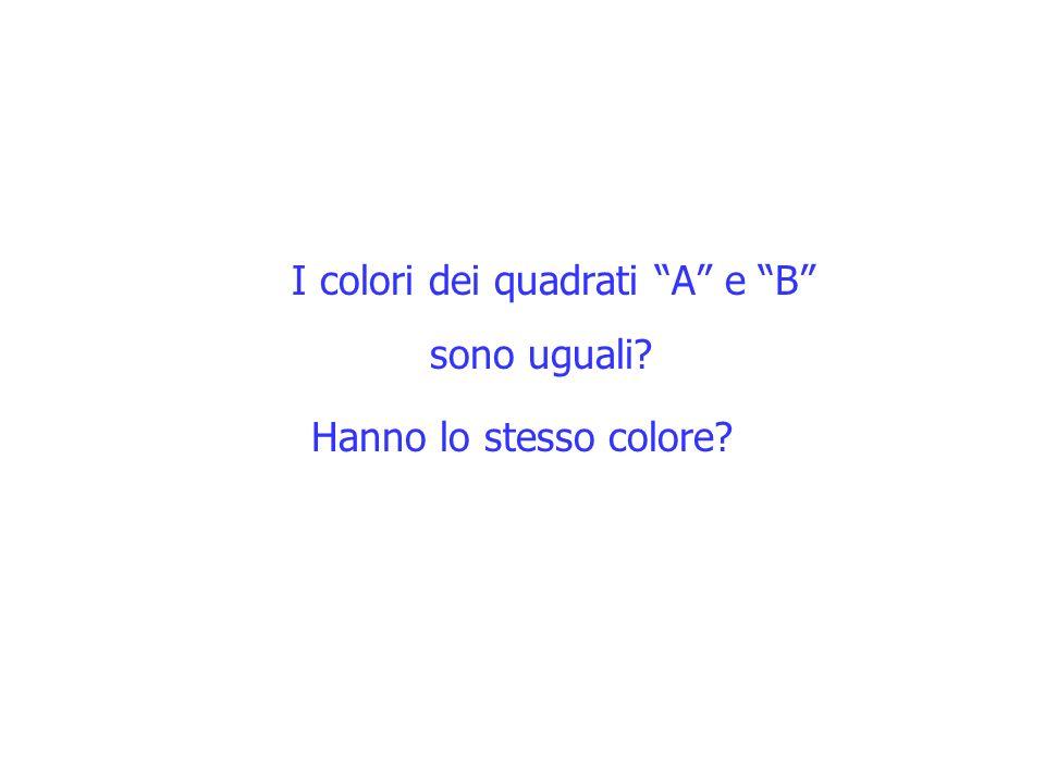 I colori dei quadrati A e B sono uguali