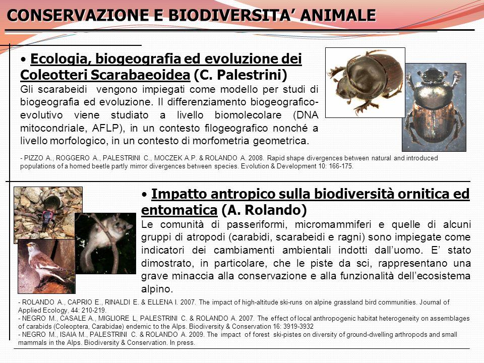 CONSERVAZIONE E BIODIVERSITA' ANIMALE
