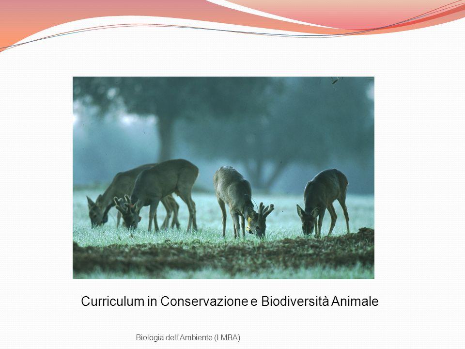 Curriculum in Conservazione e Biodiversità Animale